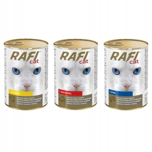 Dolina Noteci RAFI CAT Mix smaków 24x415g
